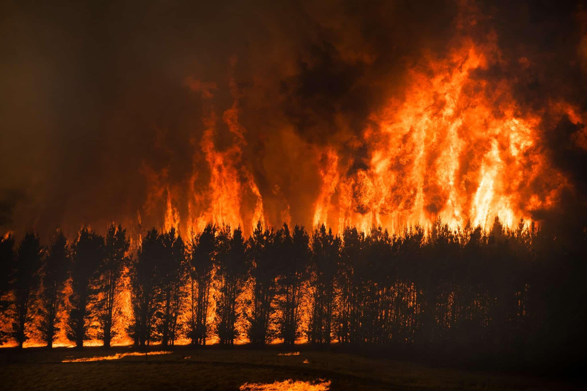 تغير المناخ على رأس قائمة الأولويات في الدورة الخمسين للمنتدى الاقتصادي العالمي في دافوس